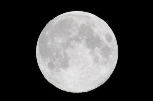 お月さんだけトリミング