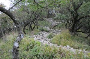 最後の登り、岩の登山道が