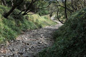 登山道を下ります