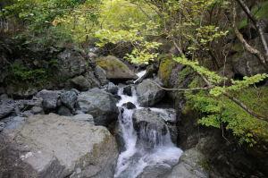 丹沢・塔ノ岳から下山
