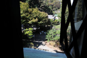 北側の窓からの眺め