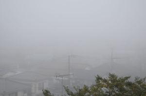 立冬の朝は濃霧