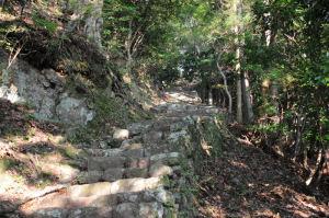 急な登山道が続きます