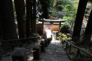 神奈川県・大山登山2