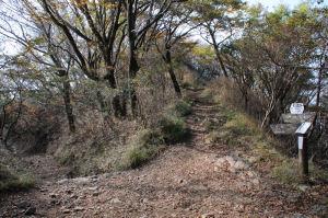 ヤビツ峠からの登山道と合流地点