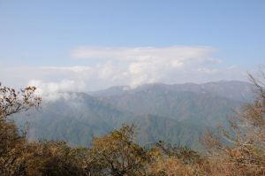 丹沢の山並みがよく見えます