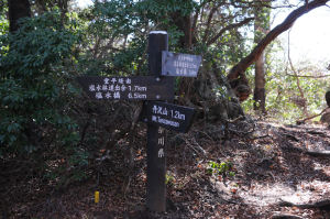 天王寺峠経由の登山道と合流