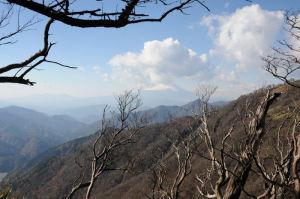 富士山にかかる雲は多く