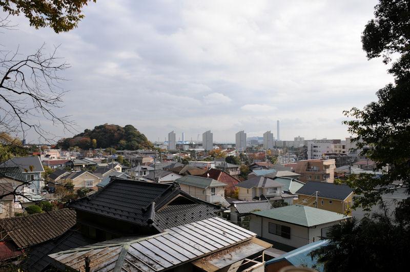 富岡の展望