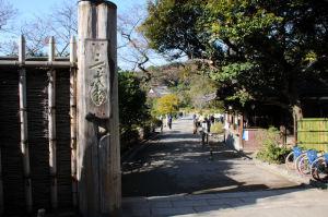 横浜三溪園紅葉が見頃