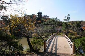 観心橋からの三重塔