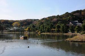 鶴翔閣と三溪記念館が見えています