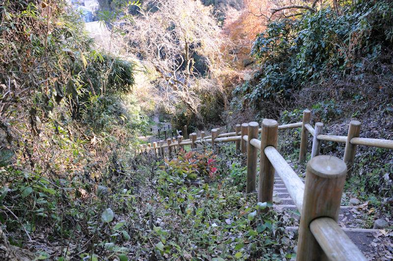 木道の階段を上ります