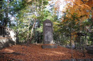 落ち葉が墓の周りに