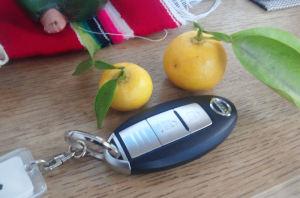 小さな柚子も