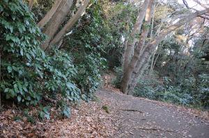 浄智寺から北鎌倉へ下ります