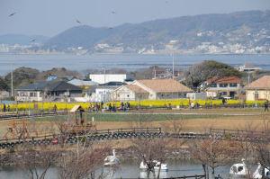小和田湾と佐島