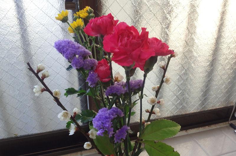 梅の花とカーネーション