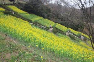 円海山周辺散策
