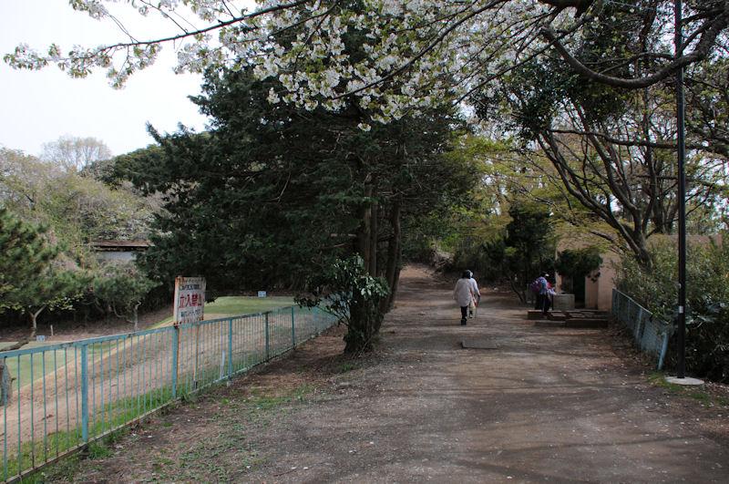 左は鎌倉CC
