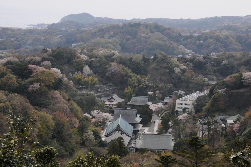 展望台からみえる建長寺