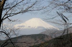 丹沢・三ノ塔登山