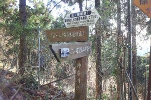 林道を進みます