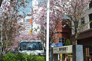 横浜港方面に歩いています