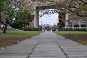 ナビオス横浜まで延びる軌道