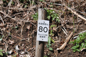歩道管理番号