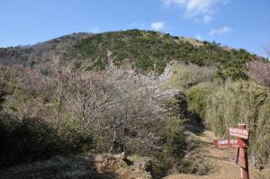 明神ヶ岳山頂と宮城野への分かれ道