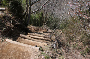 宮城野への下山道