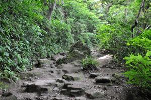 険しい坂道です