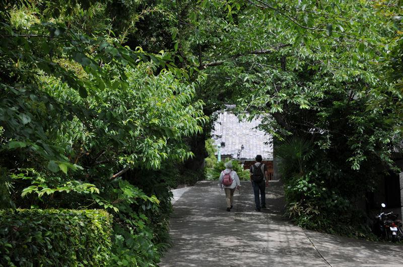 坂の参道が続き「薬王寺」があります