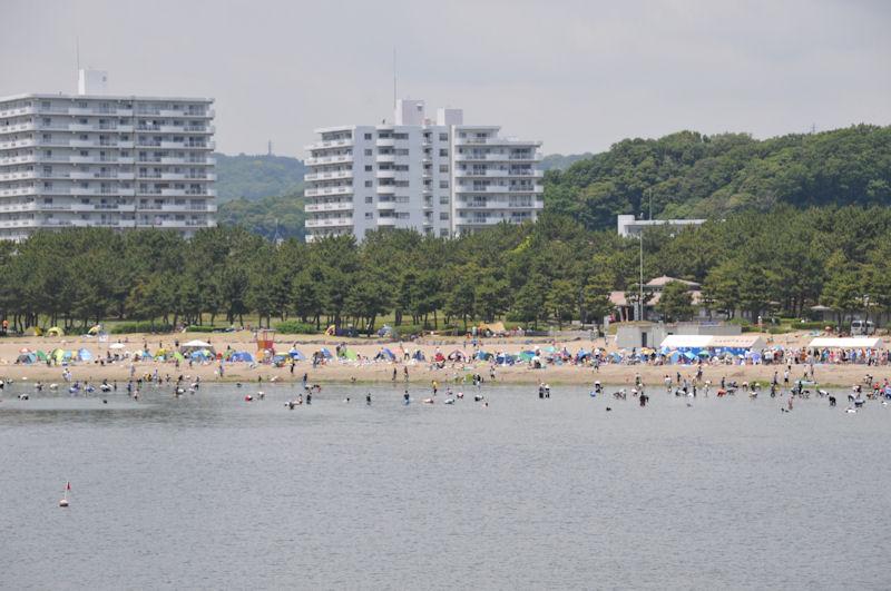 海の公園も賑わっています