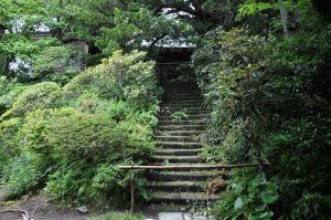 石段の上に見える仏殿