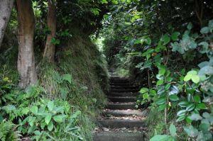狭い石段を上ります