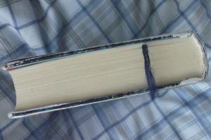 647頁もある長編