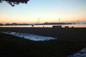 今朝の海の公園
