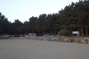 砂浜から石垣の一段高い場所