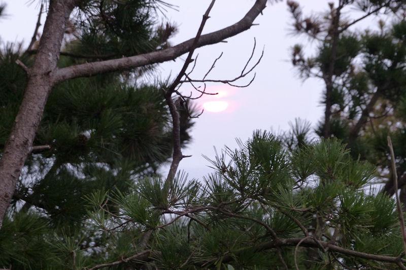 雲間から朝日が差してきました
