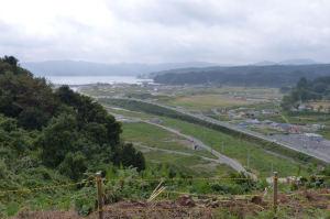 穏やかな志津川湾が見えています