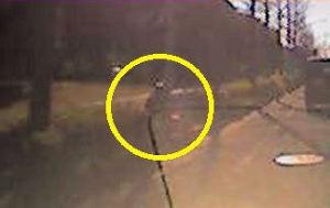 木陰に隠れた警察官の姿がみえています