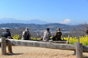 神奈川県二宮・吾妻山公園-2
