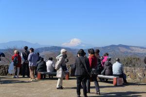 富士山がよく見えています