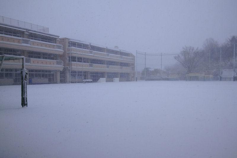 十数年ぶりの大雪