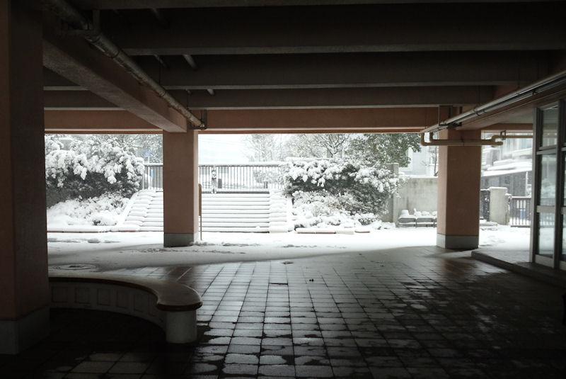 ピロティからの雪景色