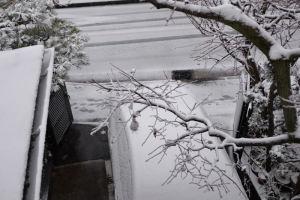 朝は車の周りはまだ雪は積もっていませんでした