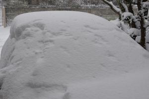 完全に雪に覆われて