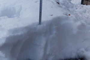 積雪を測ってみると25cmも